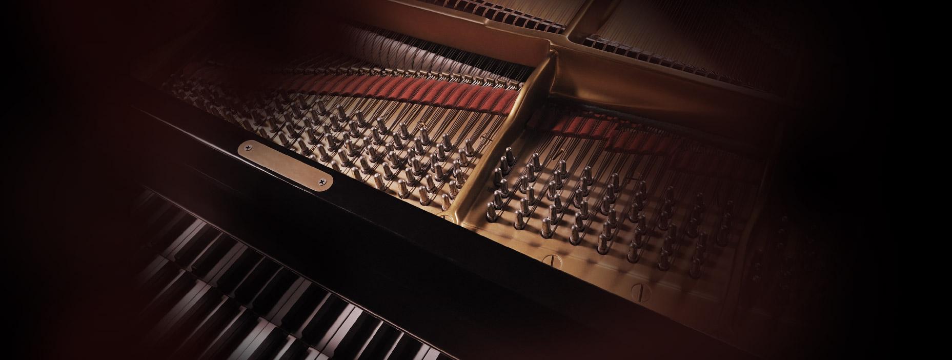 Noticias da Empresa de Eventos Musicais Para Casamentos, Orquestra e Coral, Corporativo