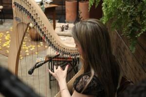 Casamento Celta utilizando Harpa